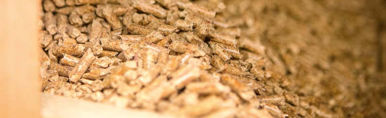 Pelletsheizung: ökologisch und günstig