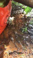 Raus mit dem Ekelboiler! Mehr Frischwasser für den Westerwald! #paradigma #trinkwasserhygiene #lebensmittelnummereins #haustechnikjansen #woraufwarten…